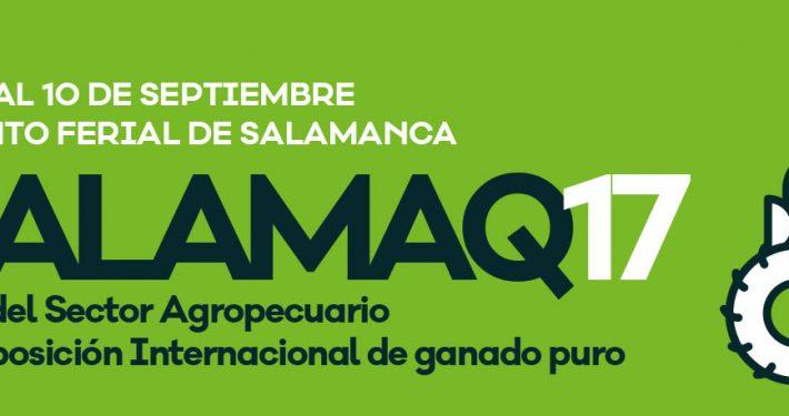 salamaq-17